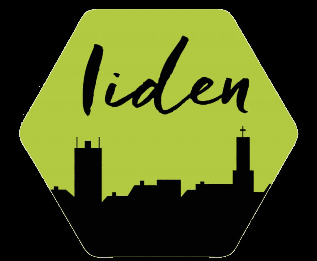 Iiden logo Iisalmi-seikkailu